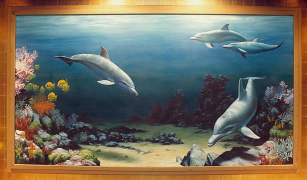 DolphinShark/dolphinsharks2.jpg